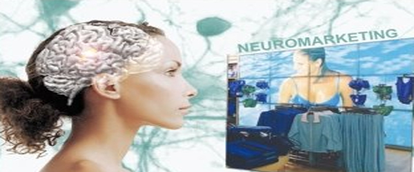 http://www.neotrouve.com/images/neurom.jpg