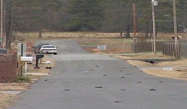 Étrange pluie le 1 Janvier 2011 - Page 24 Beebe-Arkansas-Cnn