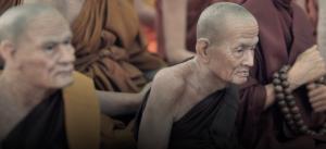 Un concept ancien du Bouddhisme expliqué par la Science Screenshot-2017-03-06-at-8.55.31-PM-300x137